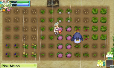 farm-ss2B